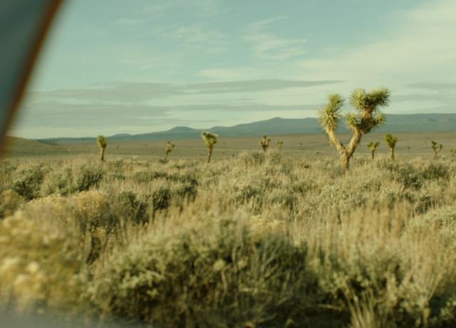 wild-landscape-tent